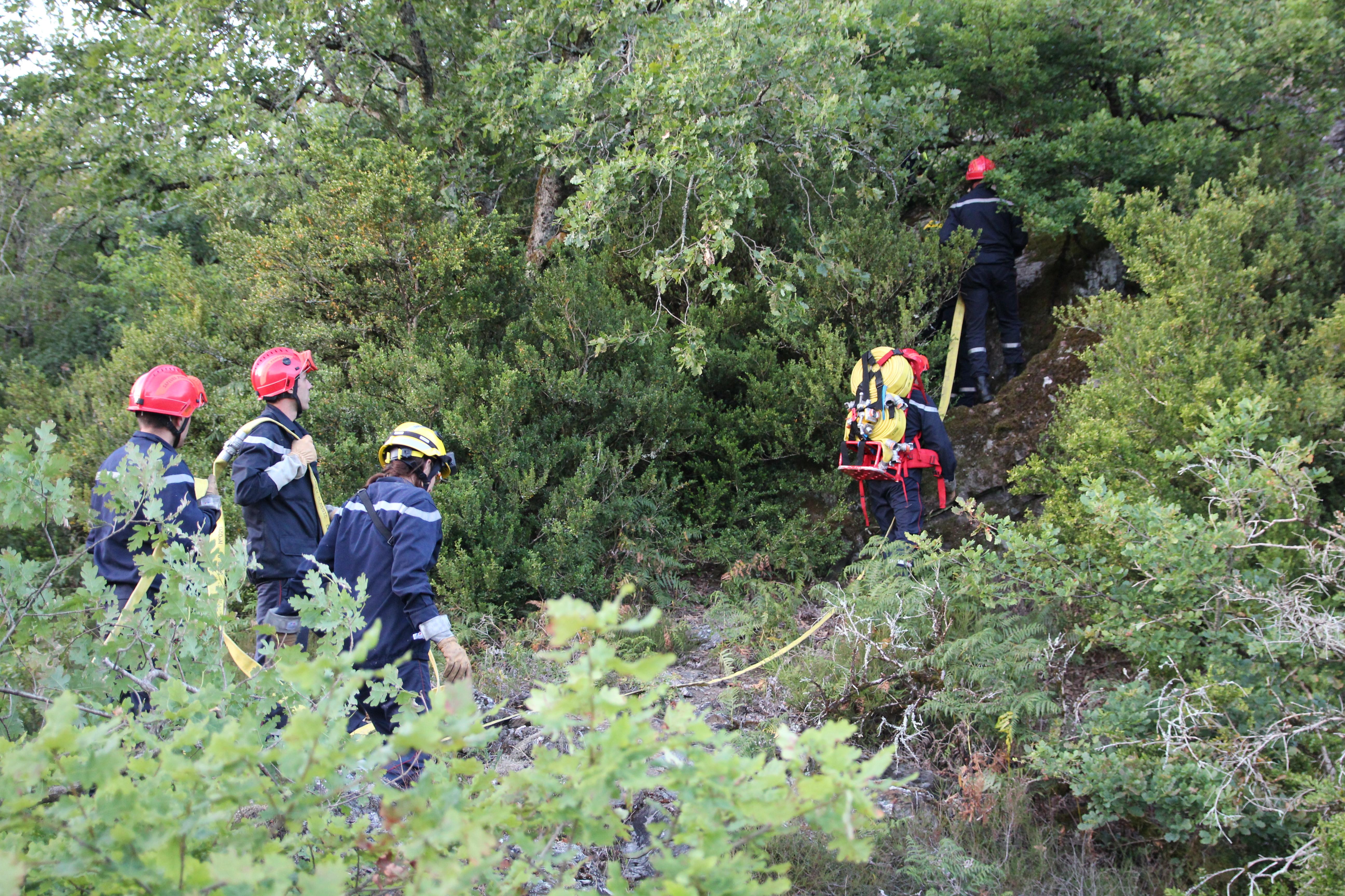 Manoeuvre départementale feu de forêt à Réalmont