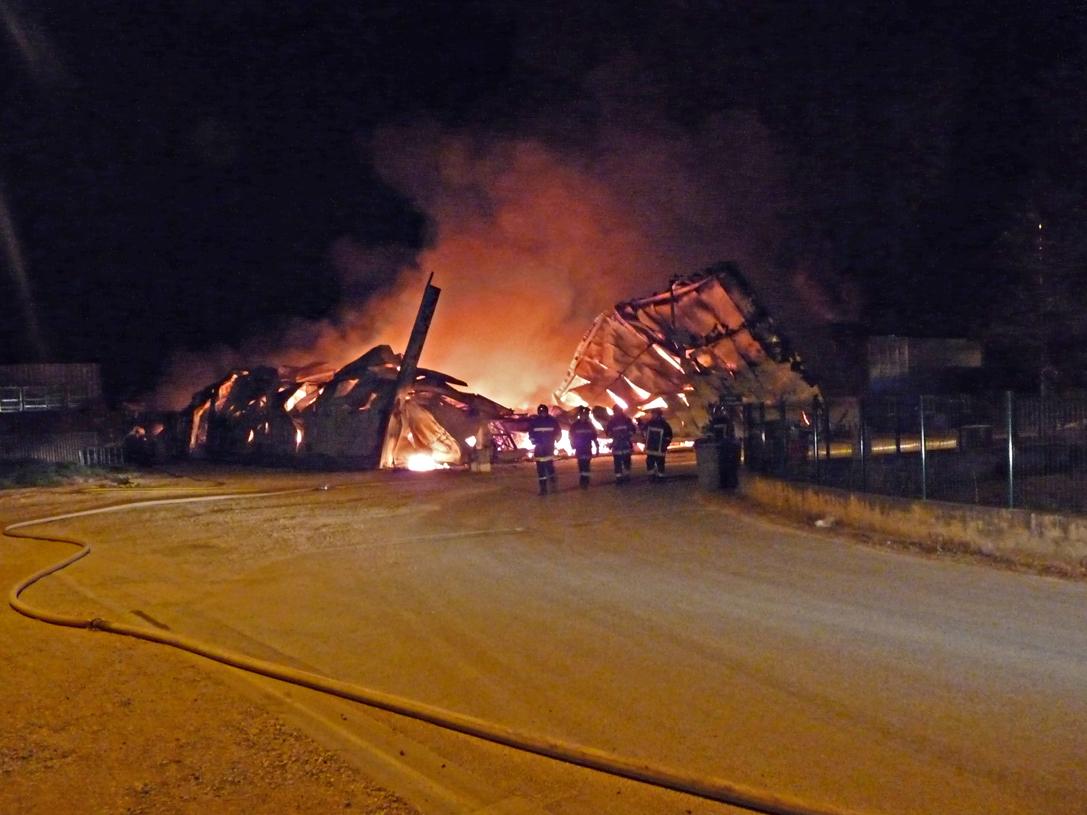 Une animalerie détruite par les flammes