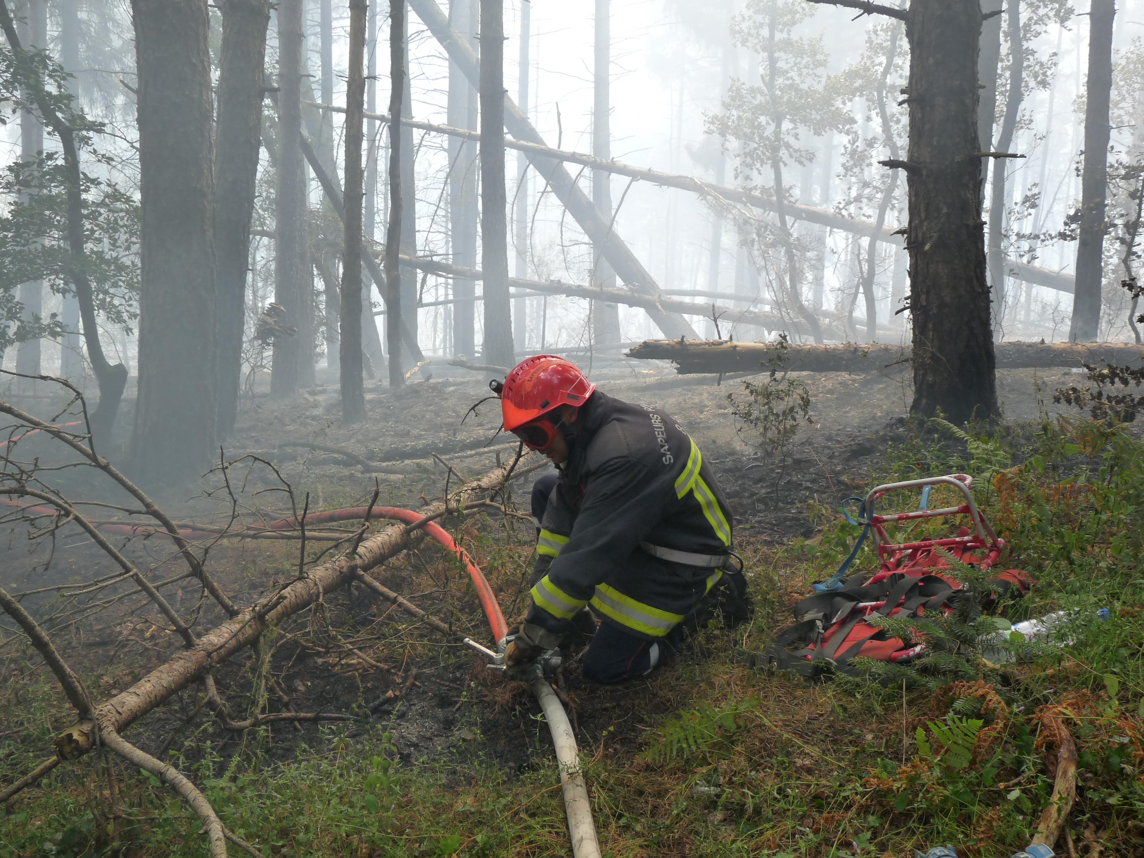 Feu de forêt à Labastide-Rouairoux