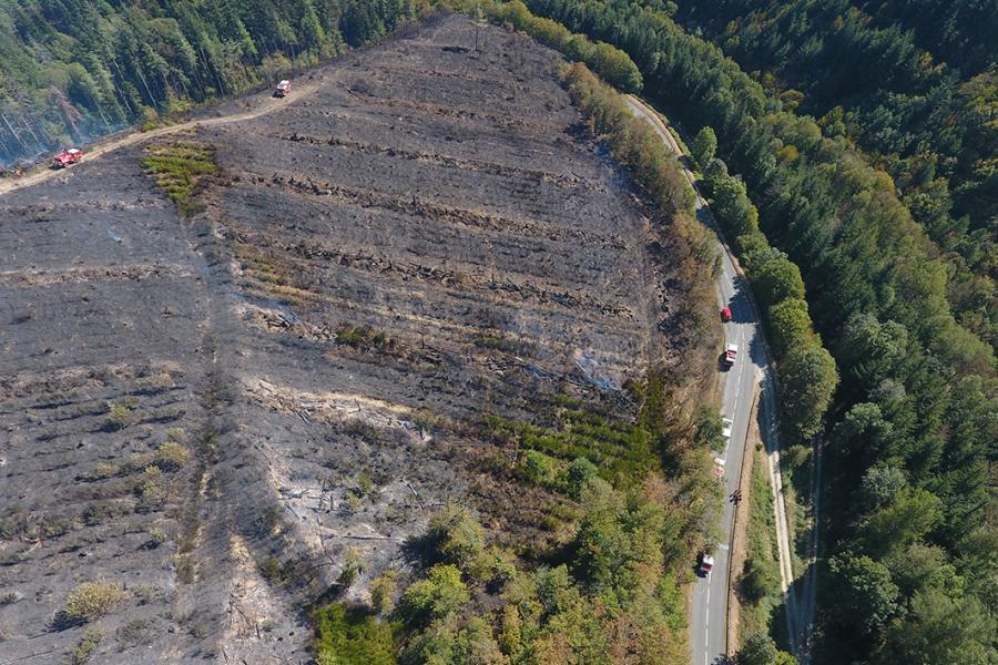 Octobre 2018 : Feux de forêts en série dans le Sud du Tarn